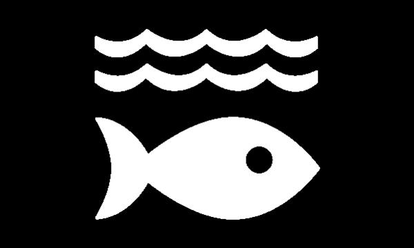 Doel 14. Bescherming van zeeën en oceanen