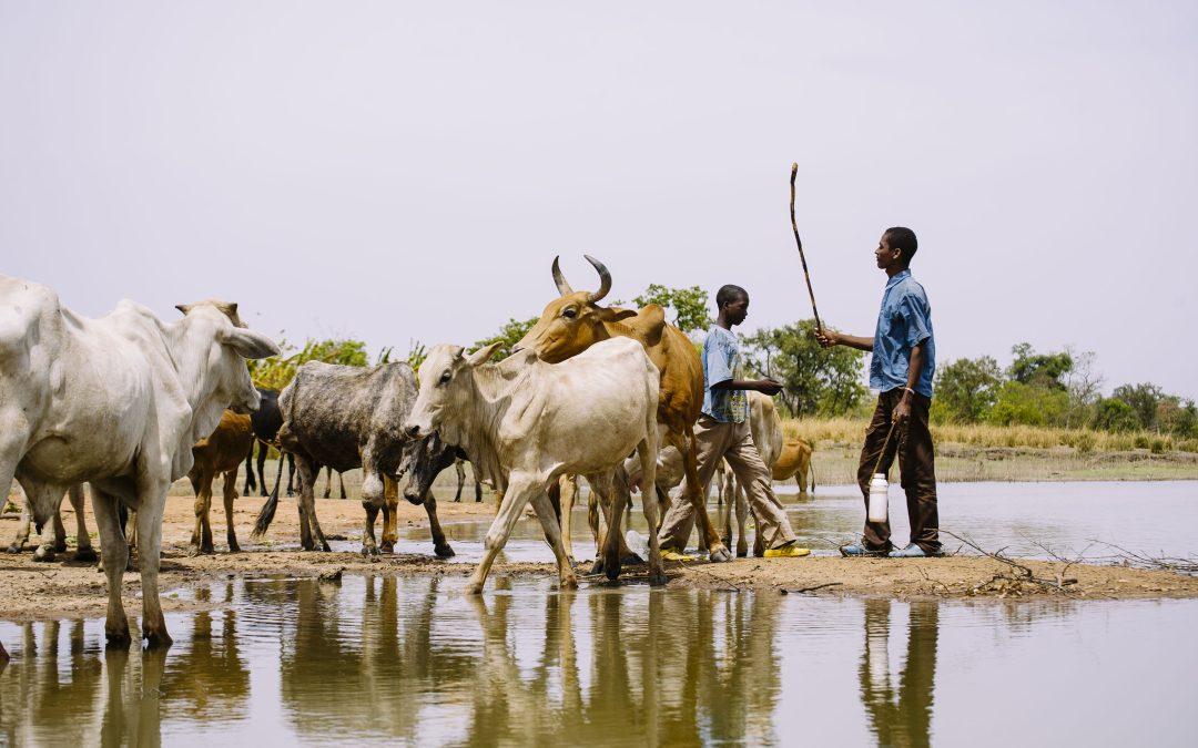 Duurzame Ontwikkelingsdoelen als leidraad voor nieuw beleid