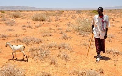 'Zero hunger' wordt lastige taak voor VN