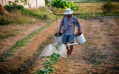 Eten voor iedereen – of blijven de armste boeren buiten beeld?