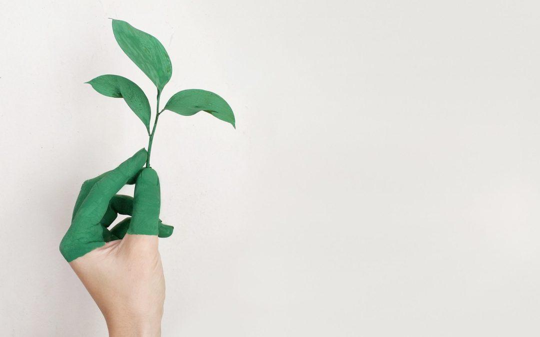 Te veel obstakels voor duurzaam investeren? Onzin