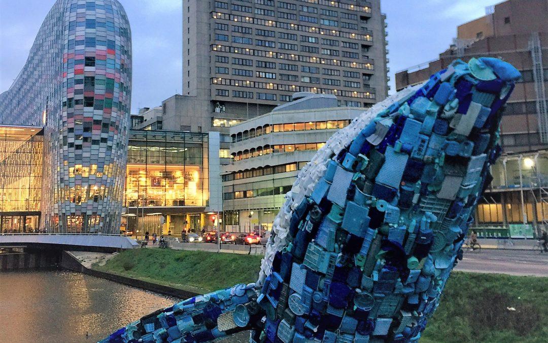 SDG 14 en de plastic walvis