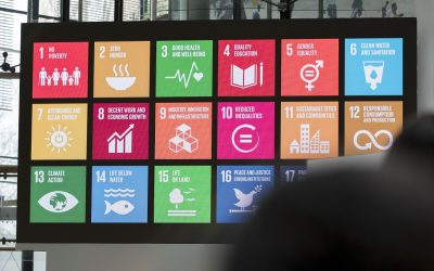 New assessment framework helps civil servants make policy and legislation SDG-proof