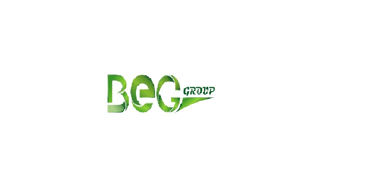 BIO ENERGY GROUP LLC